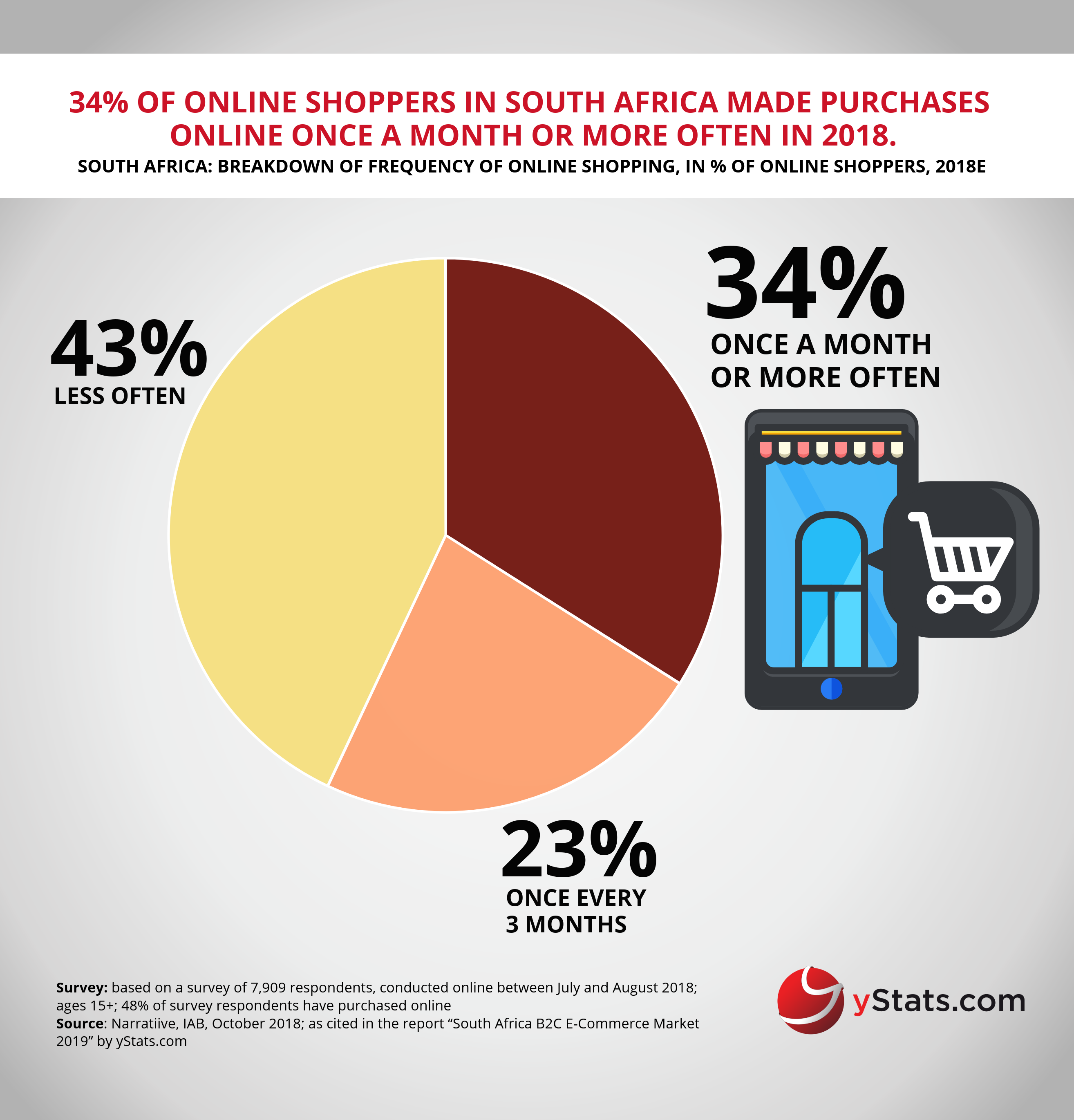 e-commerce in south africa pdf